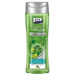 Eva Natura szampon do włosów przetłuszczających się Potrójna Siła Ziół